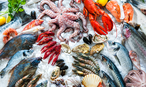 Billingsgate Seafood Discovery Day